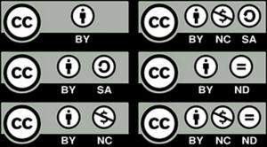 Diese Darstellung zeigt die unterschiedlichen Lizenzverträge.